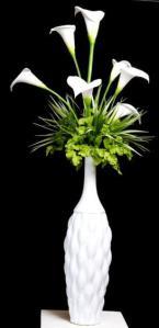Clemz Floral1